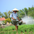 Hoi An Person Watering Plants