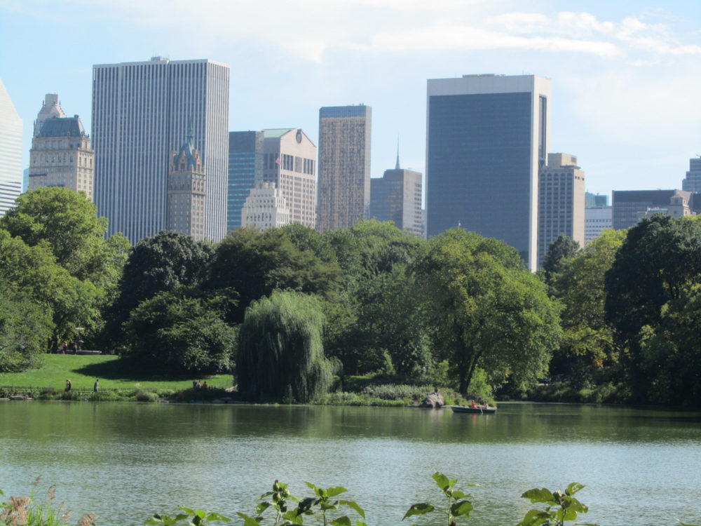 New York Central Park Summer