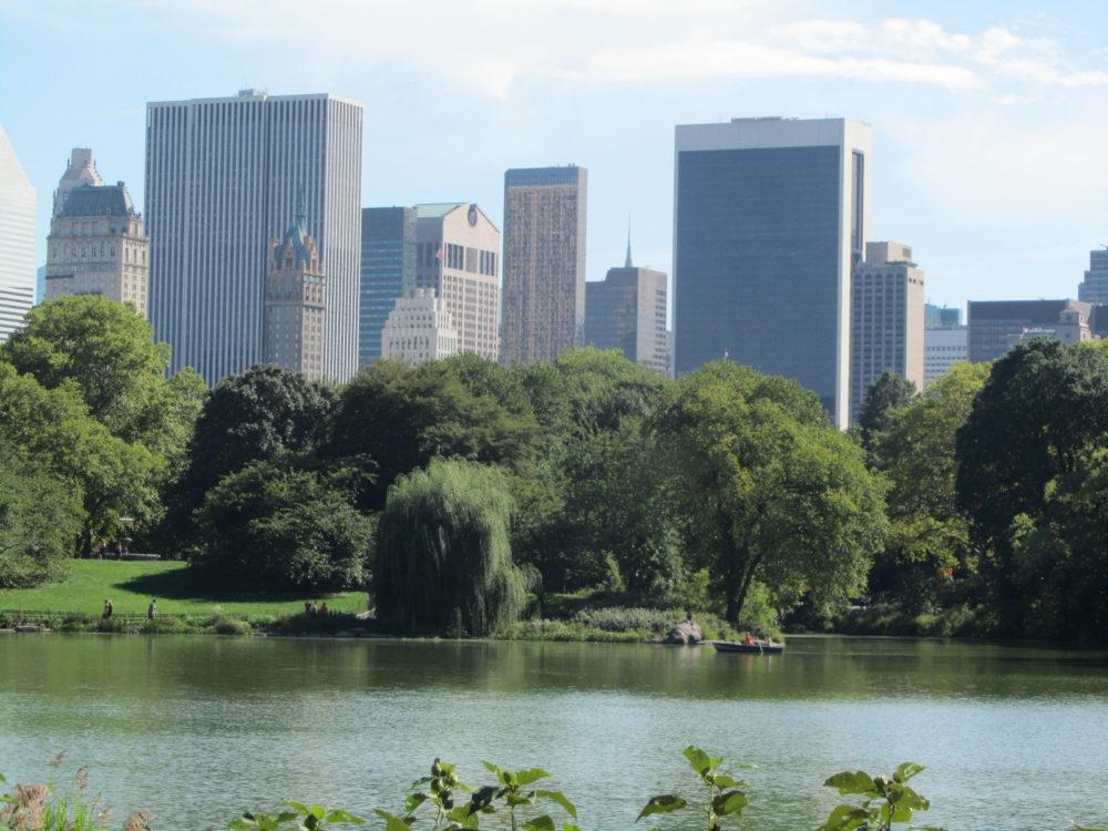 New York Central Park Summer