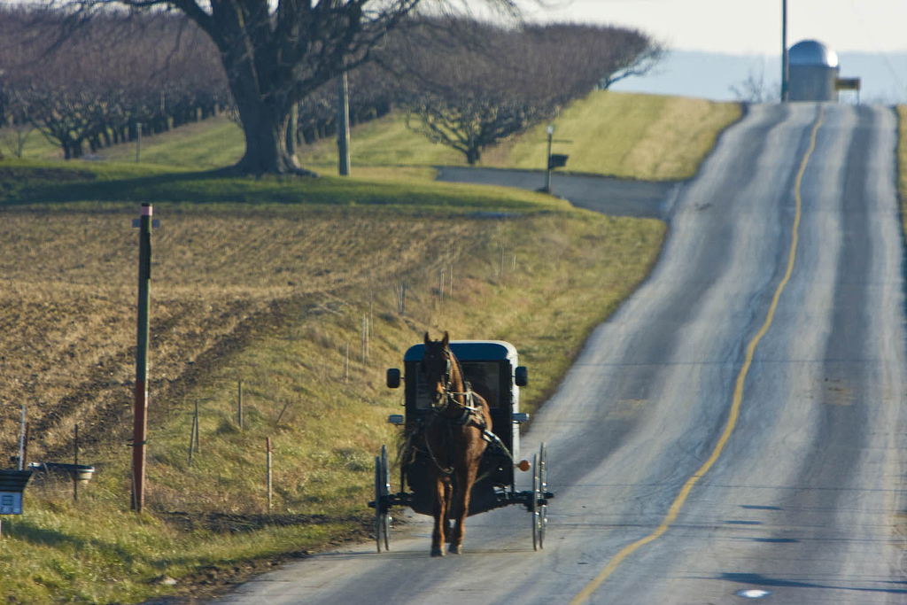 Amish Country Pennsylvania horse and buggy