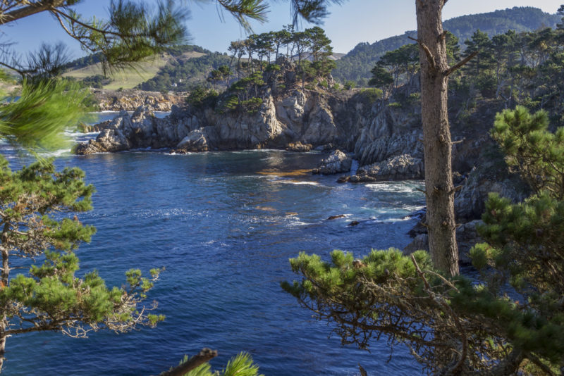 Point Lobos VT