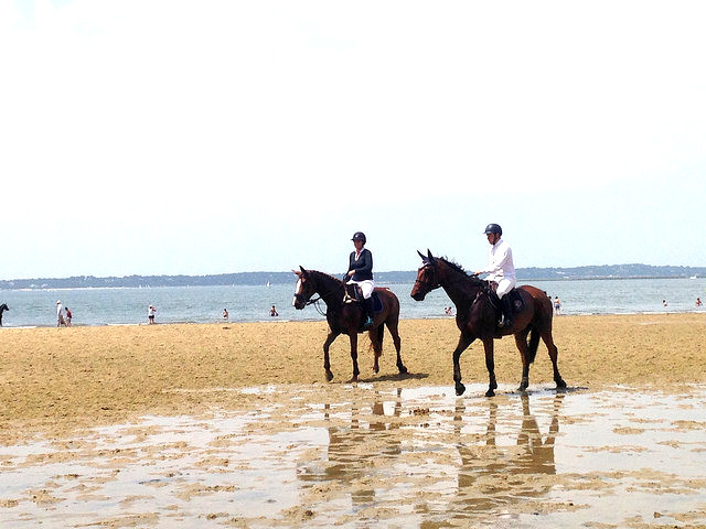 horseback riding on a beach in arcachon