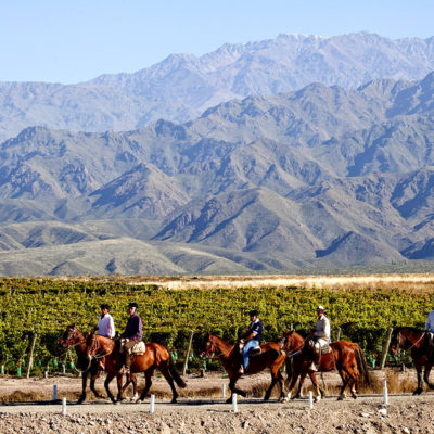Horseback riding in Argentina wine country