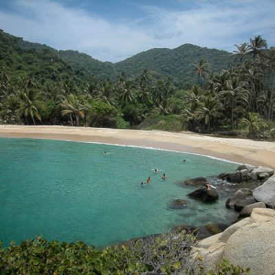 beach parc tayrona colombia palm trees