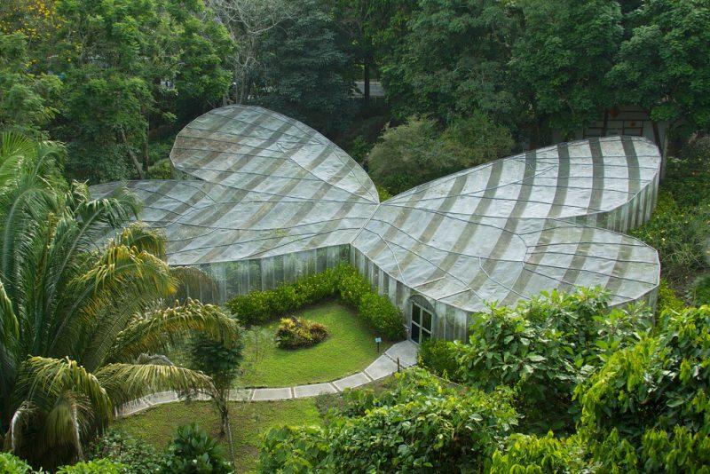 Quindío Botannical Garden